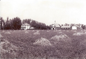 1930 – The Nelson farmstead.