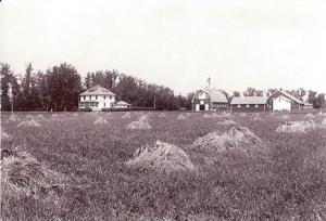 1930 – The Nelson farmstead.